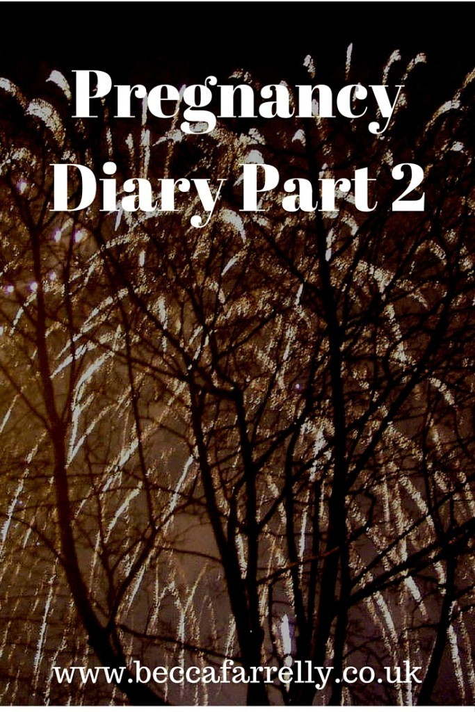 1st pregnancy diary 2