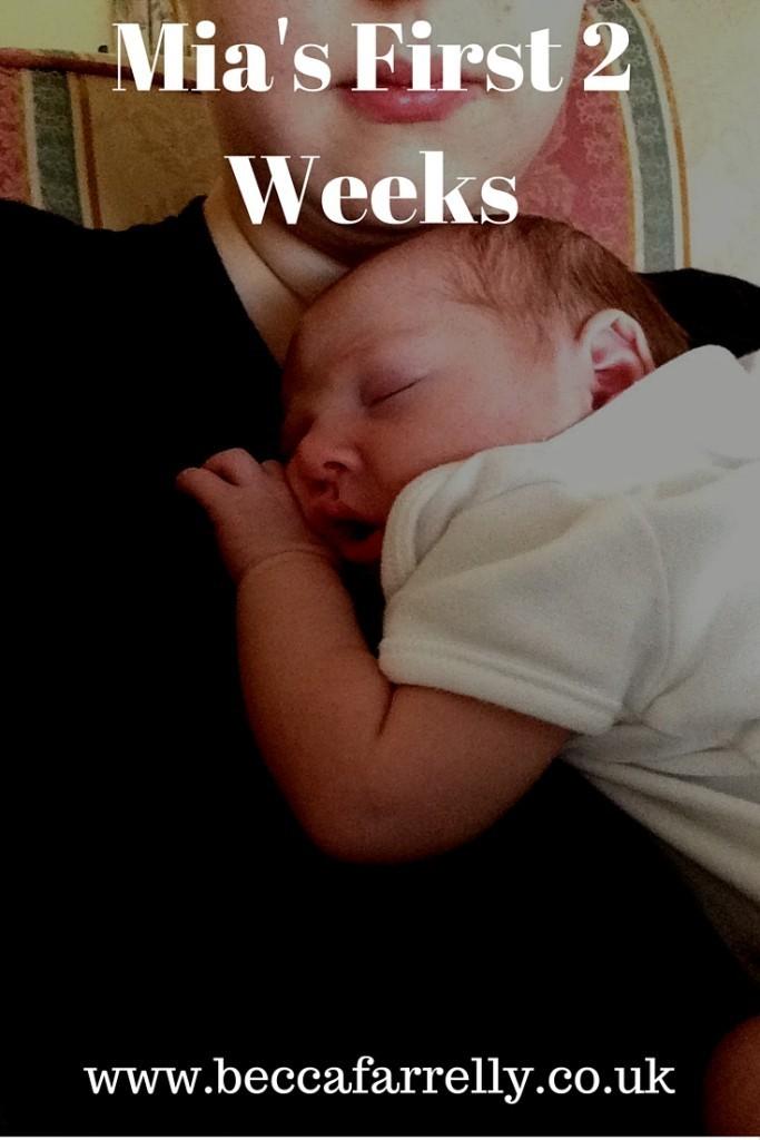 1st 2 weeks