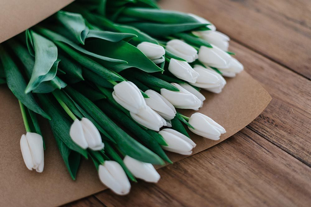 white tulips wrapped in brown paper
