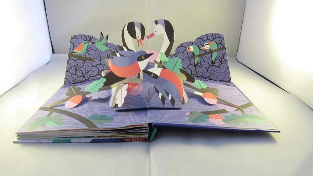 Pop up book with 4 birds sat together