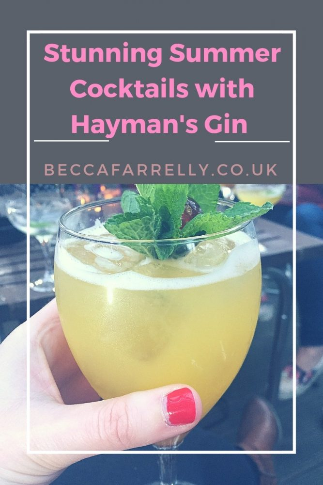 Cover image for Haymans Gin